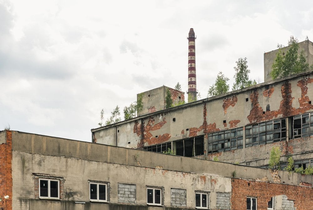 trees growing from URBEX destination Poland